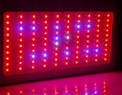 Led Grow Lights Getting Started Guide Pěstujte Jednodu E