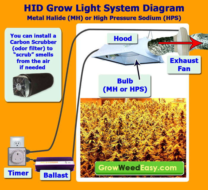 Heat Generated By Metal Halide Lamp: Plus Stealthy & Cheap Way To