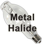 Metal Halide Grow Lights (MH) are great for growing cannabis in the vegetative stage