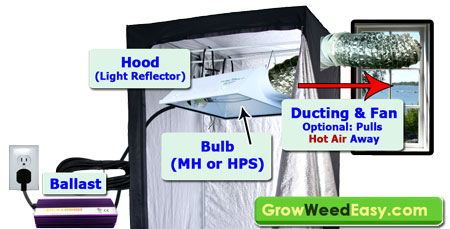 How to Set Up Metal Halide (MH) or High Pressure Sodium (HPS) Grow Lights