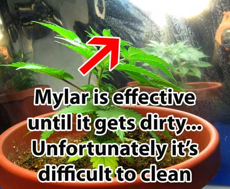 Mylar is effective until it gets dirty... unfortunately it is difficult to clean! Dirty walls reduce the reflectivity.